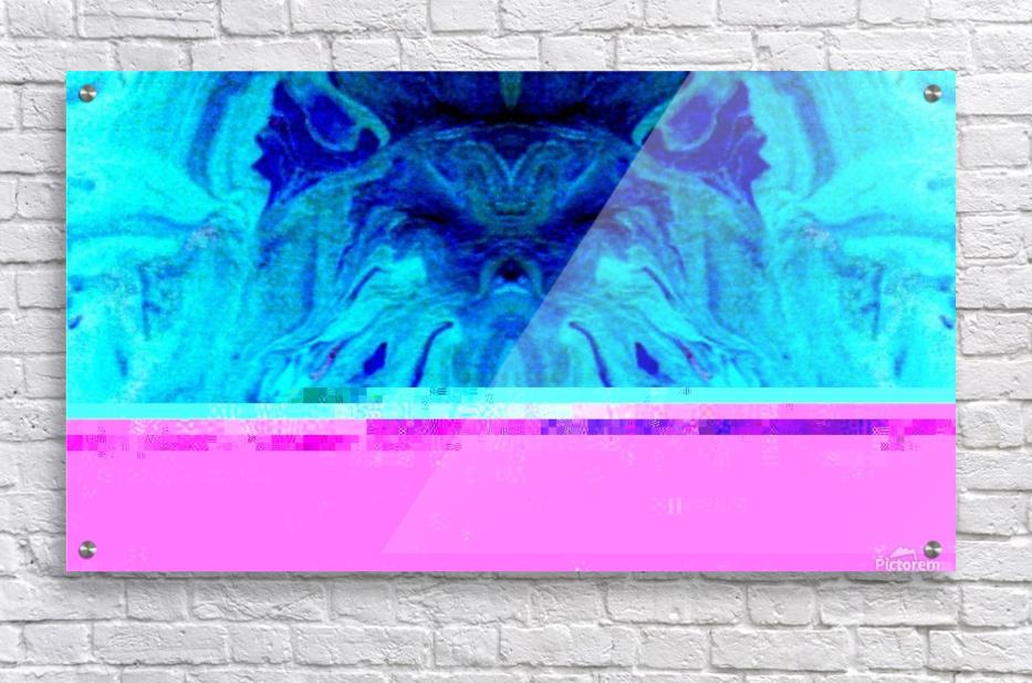 1550076120918  Acrylic Print