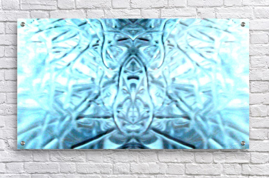1550718957535  Acrylic Print