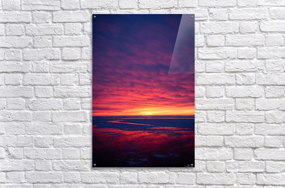 Rouge  Acrylic Print
