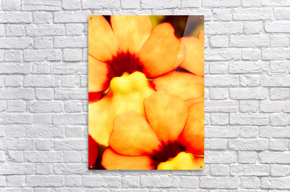 Yellow Mello  Impression acrylique