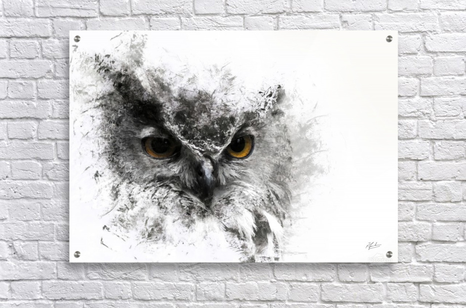 European Eagle Owl 01  Acrylic Print