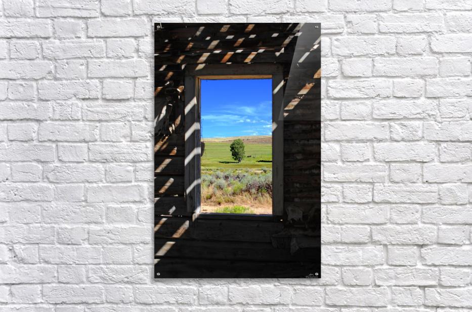 Wild Frontier  Acrylic Print