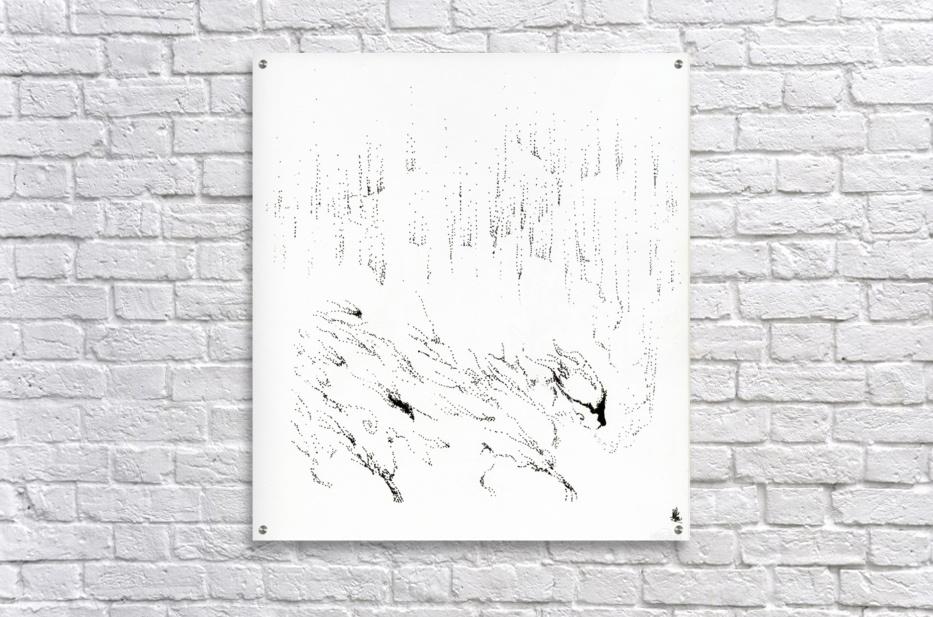 Northern  Acrylic Print