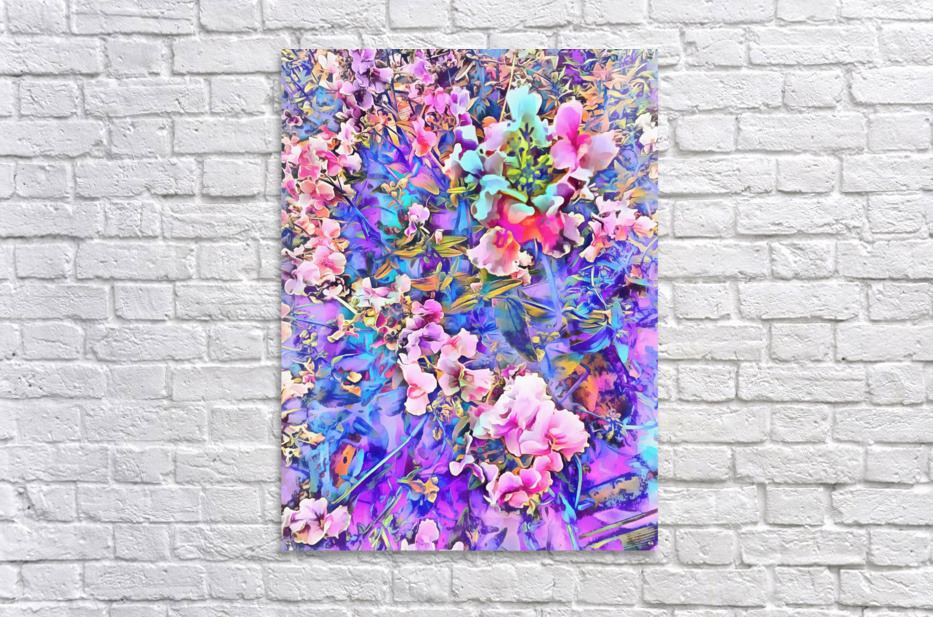 Pink and Blue Fusion  Acrylic Print