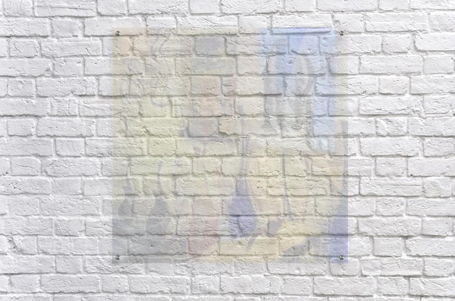 Room Art  Acrylic Print
