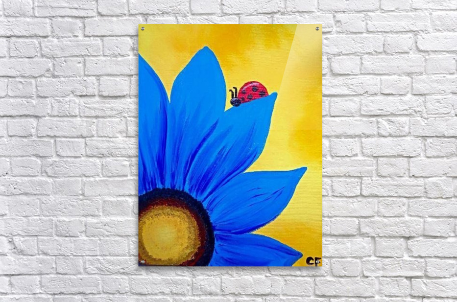 Easy Acrylic Canvas Painting Ideas For Beginners 3 Delcie