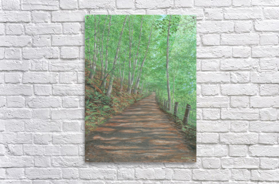 Black Bridge Ghost - Newtown Scenes  20X24  Acrylic Print
