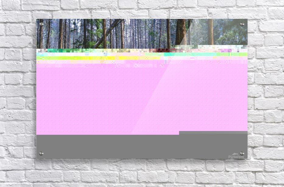 Density  Acrylic Print