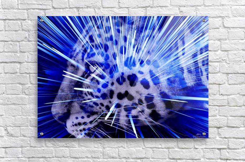 Leopard pop 4   Acrylic Print