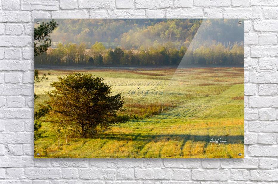 Lonely Walk  Acrylic Print