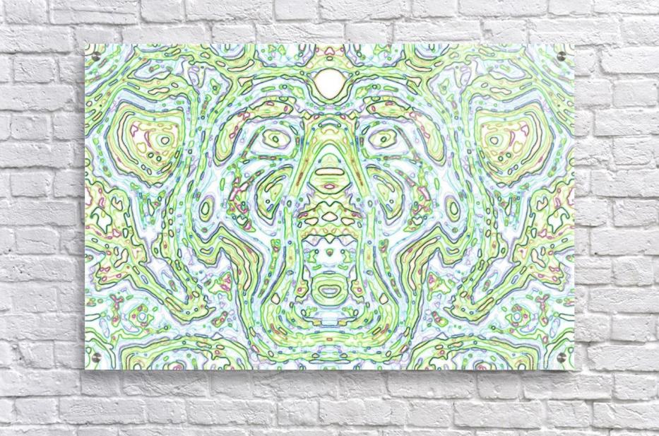 CapPY X  Acrylic Print