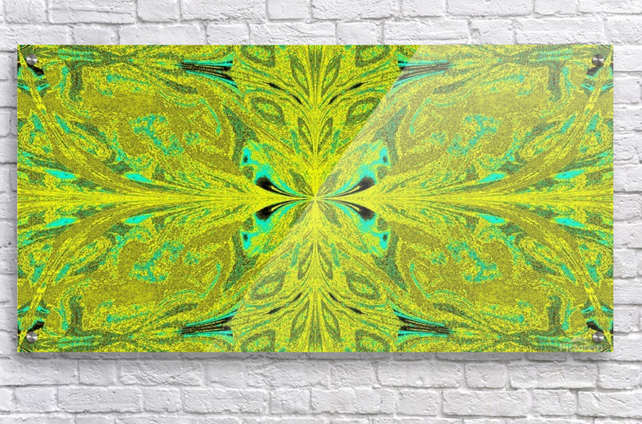Butterfly of the Wind 4  Acrylic Print