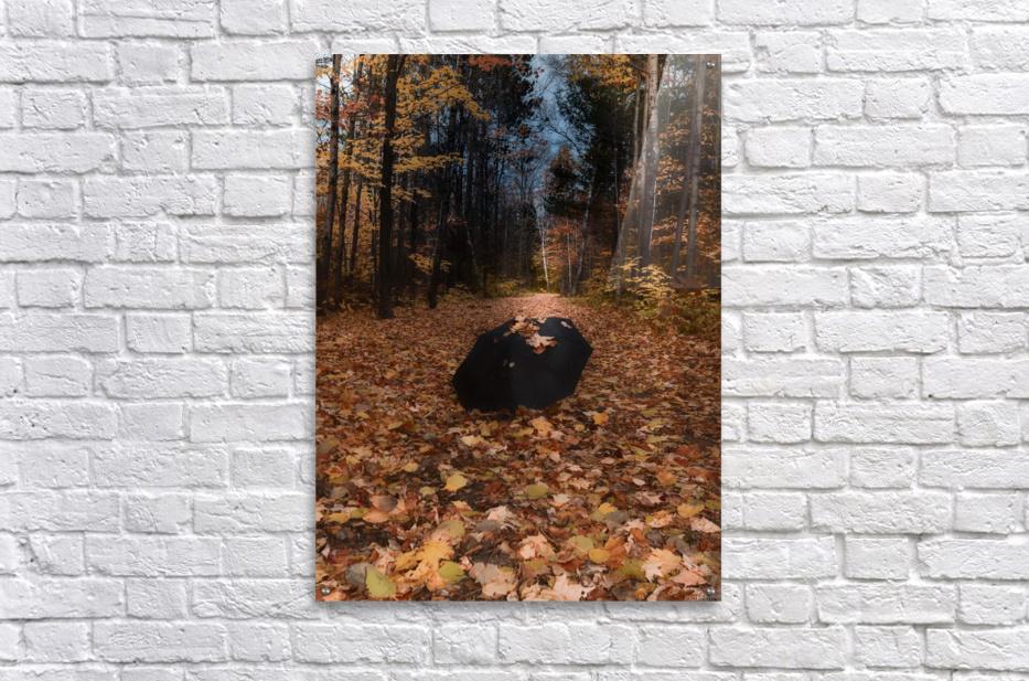 Tapis de feuille  Impression acrylique