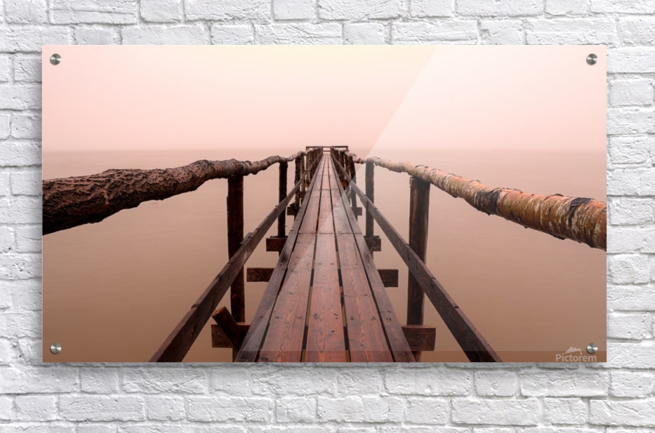 Enter The Lake  Acrylic Print