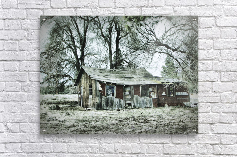 Abandoned Homestead  Acrylic Print