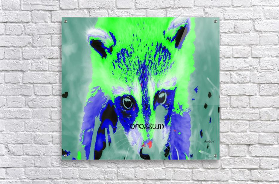 abstract Opossum  Acrylic Print