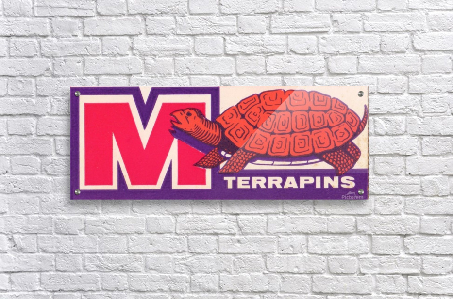 1957 Maryland Terrapin Art Reproduction  Acrylic Print