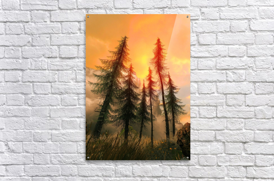 Pine Woods Sunset Fantasy  Acrylic Print