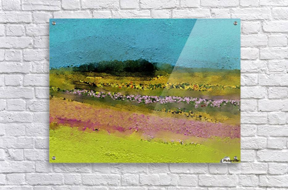 0268  Acrylic Print