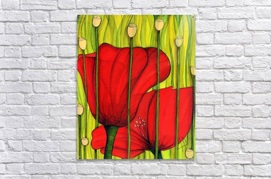 Coastal poppies  Acrylic Print