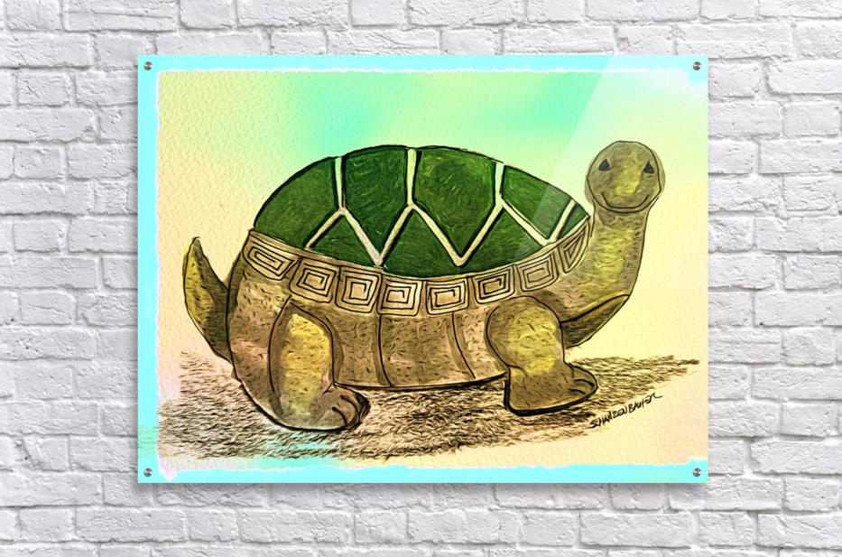 Turtle   Acrylic Print
