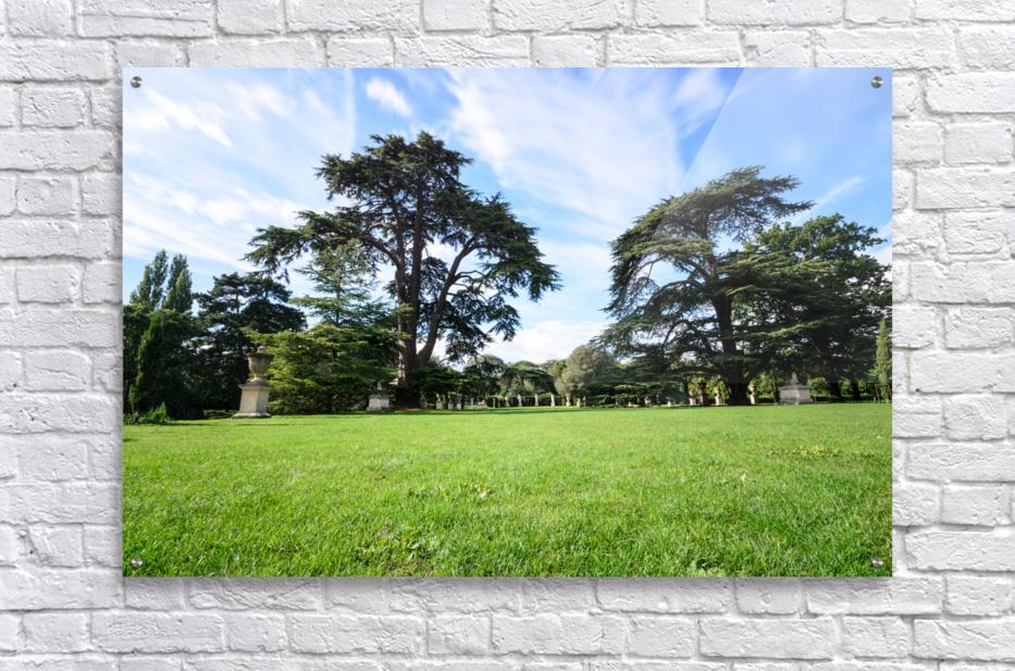 Summer London park  Acrylic Print