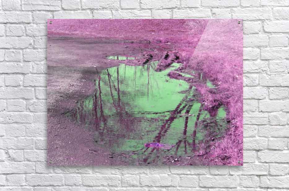 Value of a Puddle   Acrylic Print
