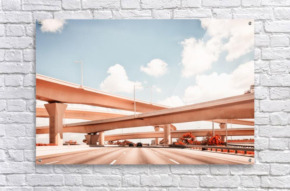 Dolphin Expressway 002  Acrylic Print