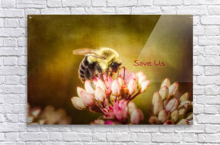 Save Us  Acrylic Print