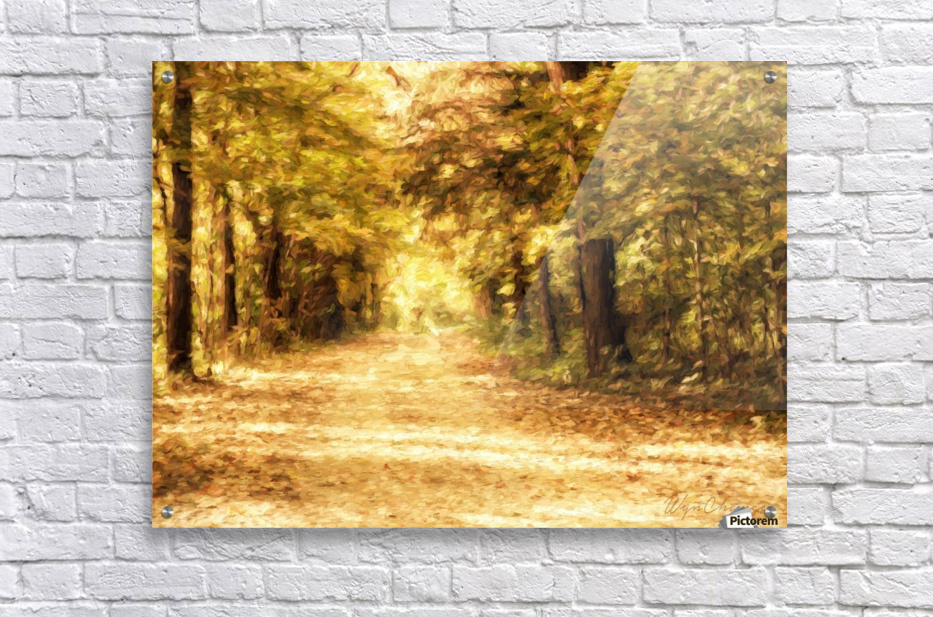 Autumn Path 2  Acrylic Print