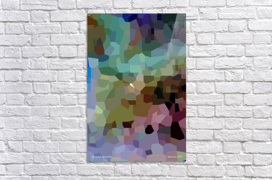 dissonant harmonies  Acrylic Print