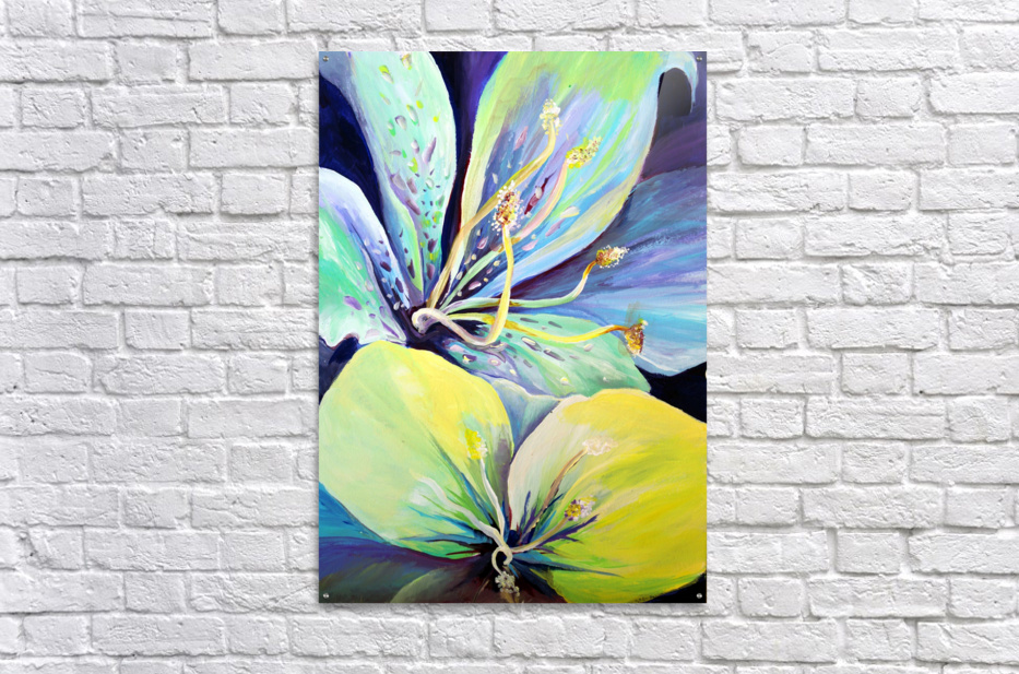 Blooming Flowers   Acrylic Print
