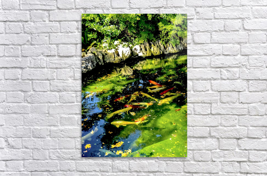Pound of Color  Acrylic Print