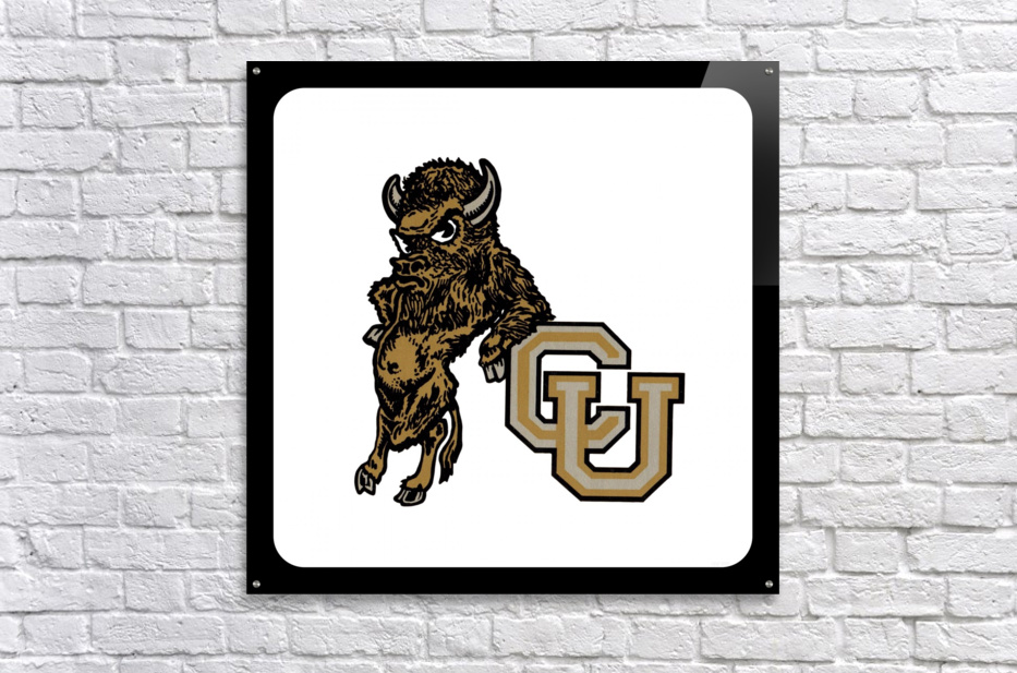 vintage college mascots colorado buffalo art  Acrylic Print
