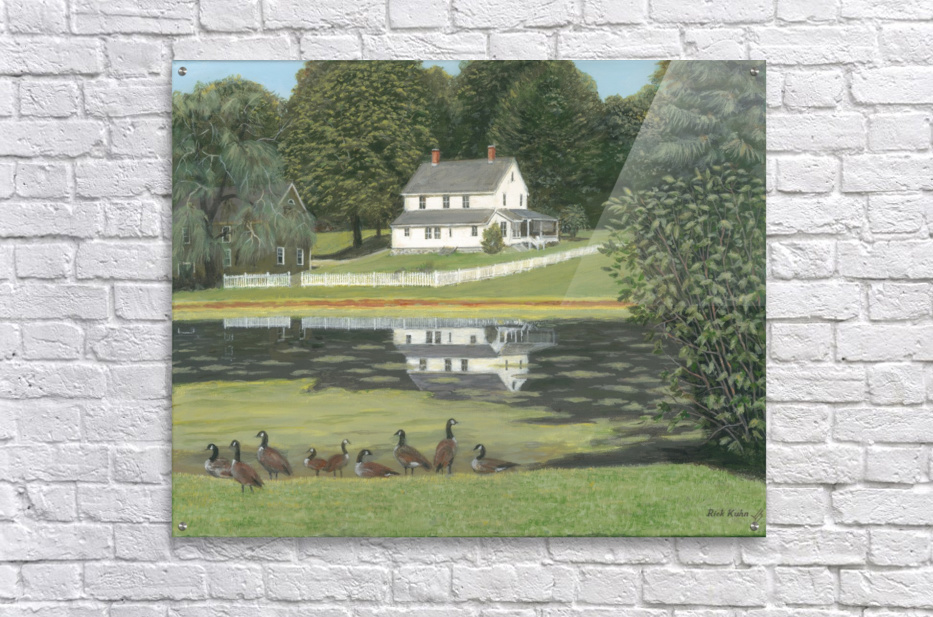 Geese at Hawley Pond - Newtown Series 16X20  Acrylic Print