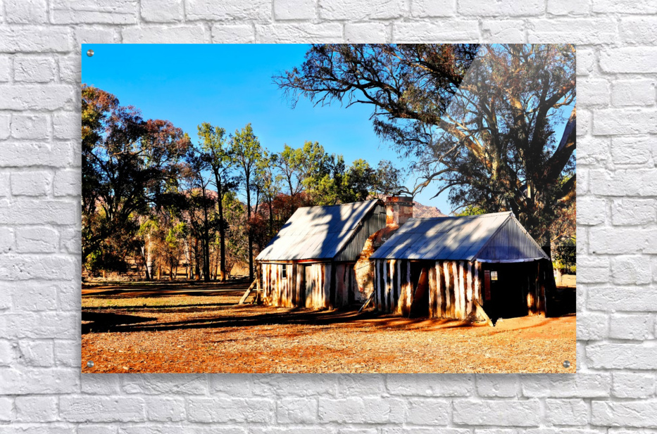 Old Wilpena Station   Acrylic Print