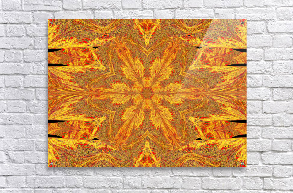 Sunshine In The Meadow Wildflower 2  Acrylic Print