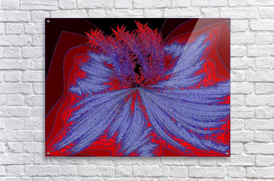 Desert Sand Wildflower 2  Acrylic Print