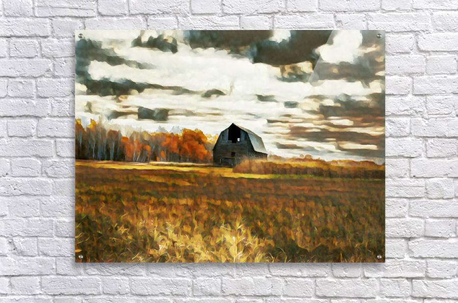 barn um lisadrewphotos  Acrylic Print