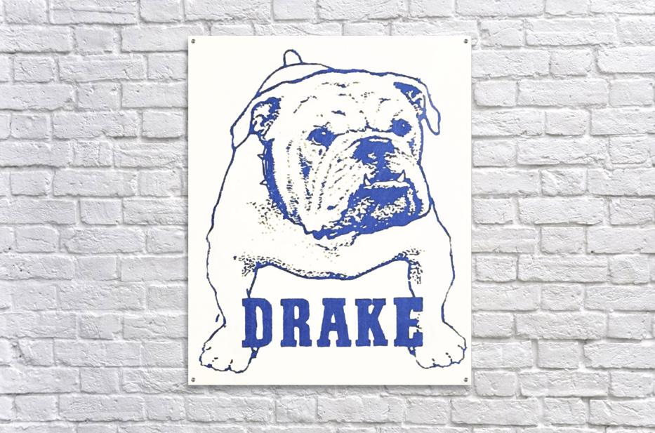 1950s Drake Bulldog Art  Acrylic Print