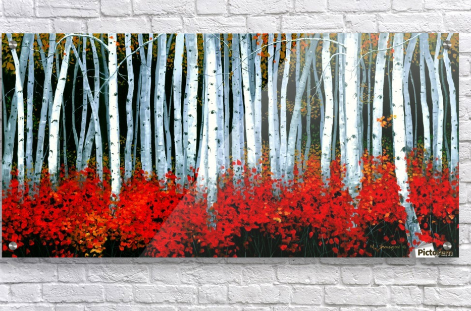 Autumn Aspens  Acrylic Print