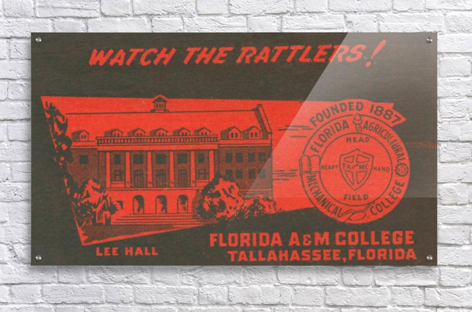 1950 Florida A&M  Acrylic Print