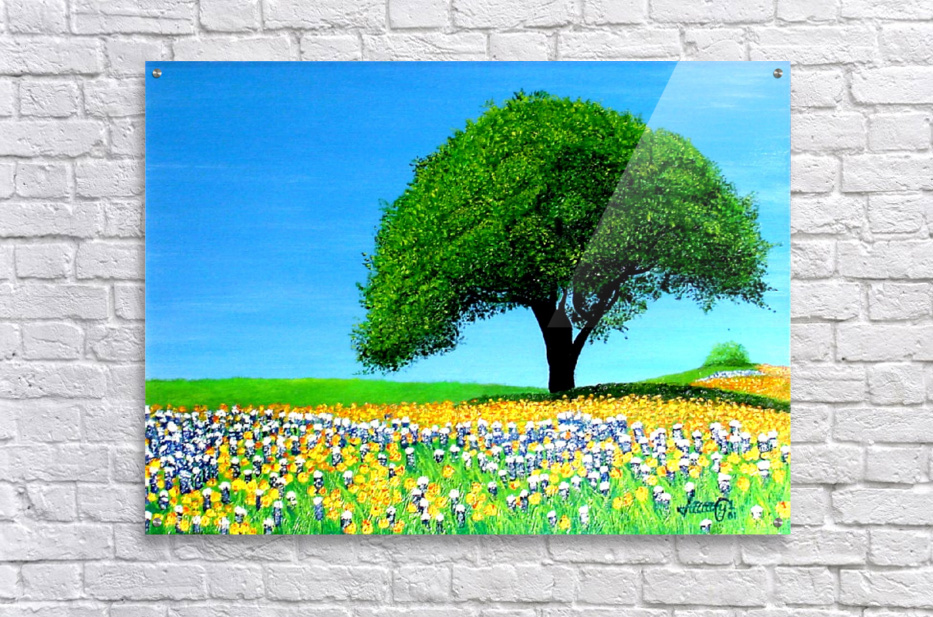 Texas Hill Country   Impression acrylique