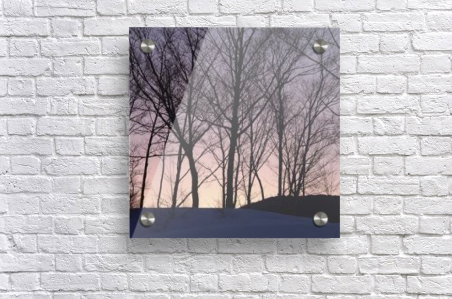 landscape_2_1031  Acrylic Print