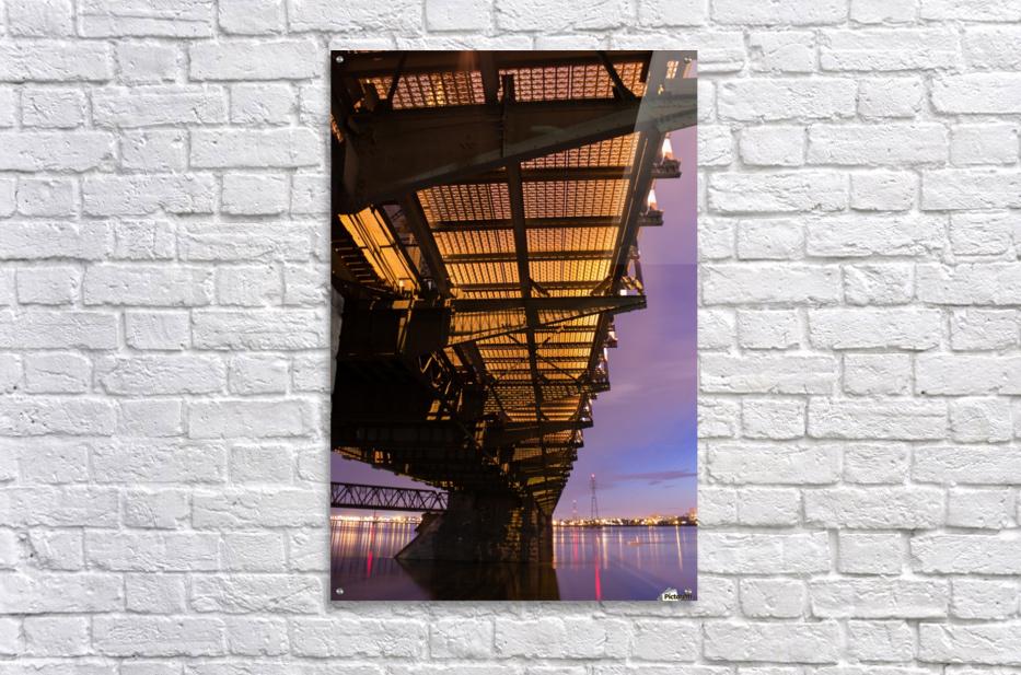 IMG_2276  Acrylic Print
