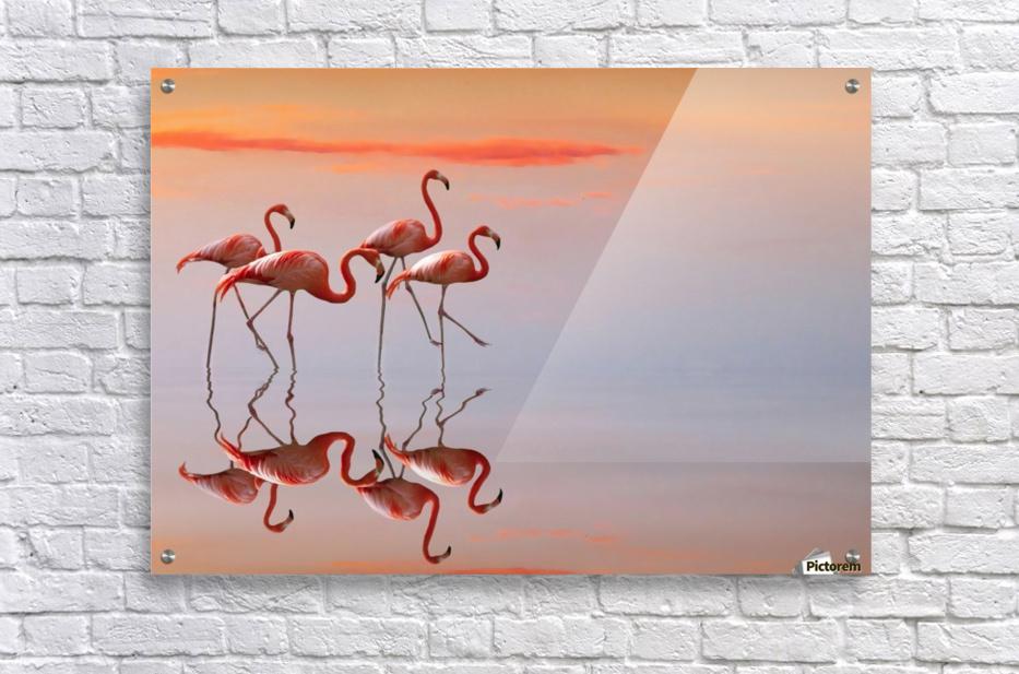 Untitled  Impression acrylique