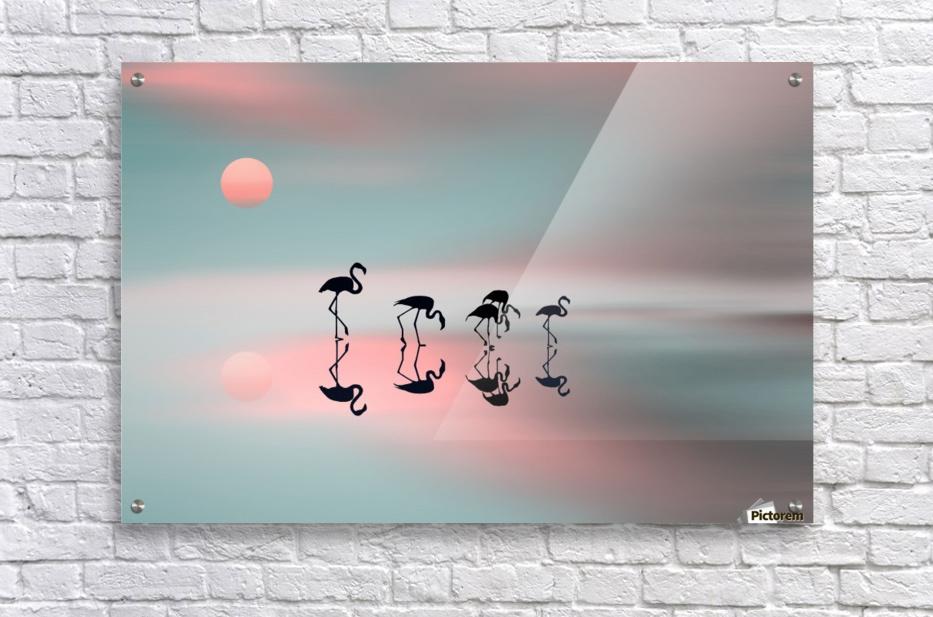 Family flamingos  Acrylic Print