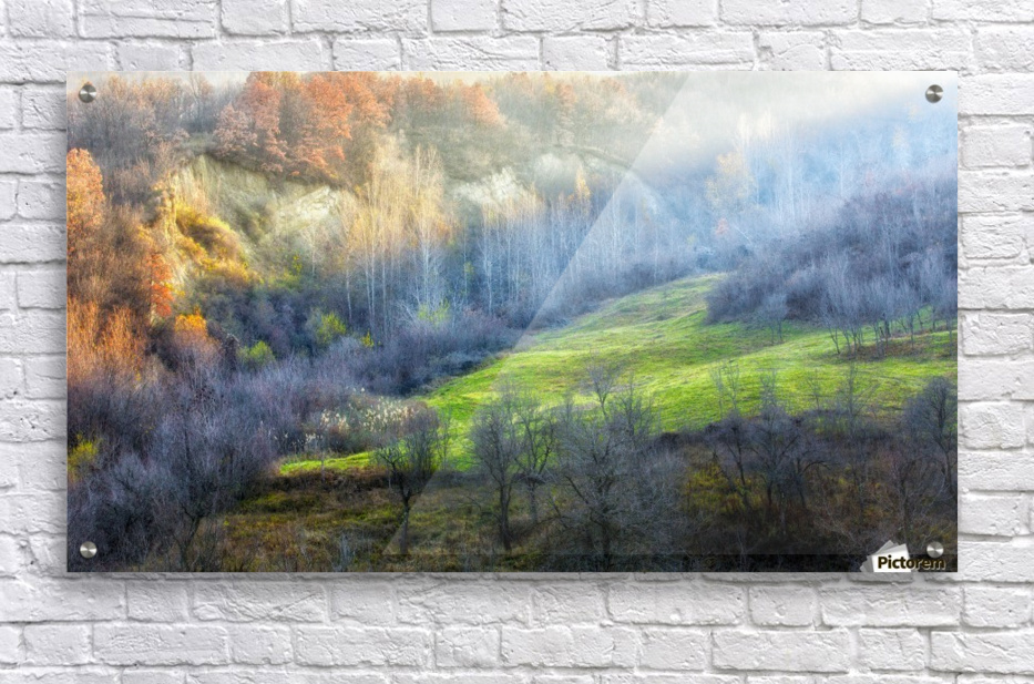 November colors  Acrylic Print