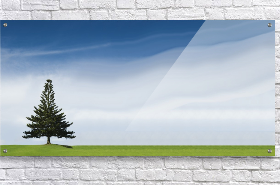 A Coniferous Tree Standing Alone In A Field  Acrylic Print