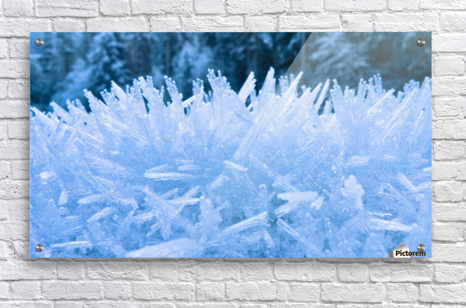 Close Up Of Hoar Frost Along The North Fork Of The Nooksak River During Winter, Mount Baker National Forest, Washington, Usa  Acrylic Print